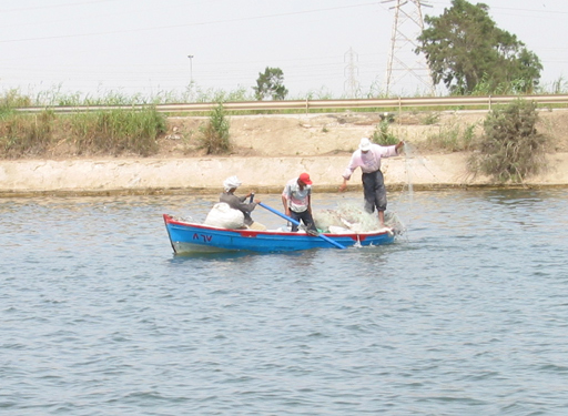 Fishing on the Suez Canal