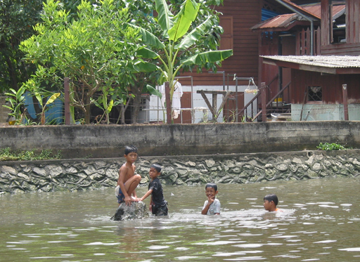 Boys swiming in the khlong