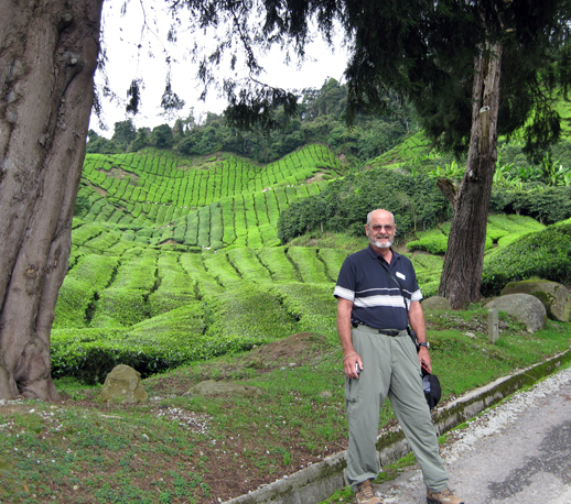 Walt at a tea plantation