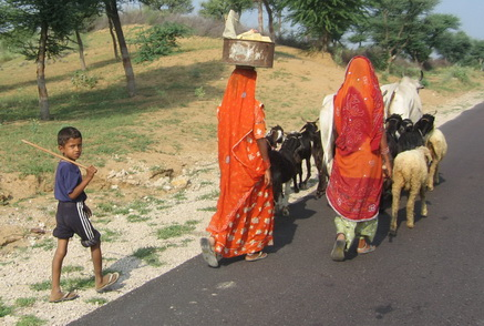 Women in saris walking down the road.
